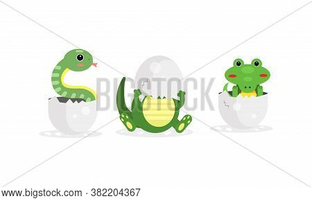 Cute Reptile Hatching From Cracked Egg Vector Set