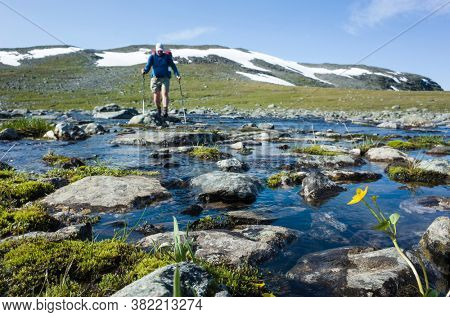 Hiking in Swedish Lapland. Mountain nature of Scandinavia in summer sunny day. Man crossing river blured on background, Trekking on Nordkalottruta or Arctic Trail in northern Sweden