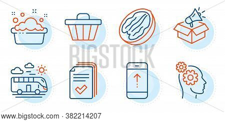 Pecan Nut, Swipe Up And Handout Signs. Thoughts, Hand Washing And Bus Travel Line Icons Set. Shop Ca