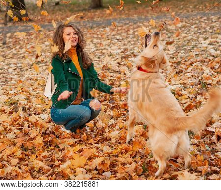 Portrait Of A Curly Young Woman Hugging Her Golden Retriever Dog In The Autumn Park. Yellow Leaves B