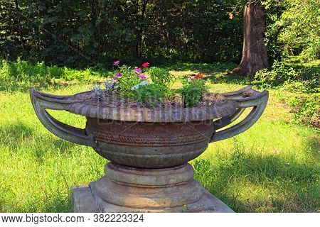 Beautiful Landscape Photo Of The Big Ancient Metal Flower Pot With Beautiful Flowers. Big Trees In T