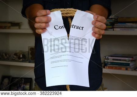 Tied Hands Tearing Contract Paper In Front Of Bookcase. Bound Man Hands Rip Paper Contract, Breach O