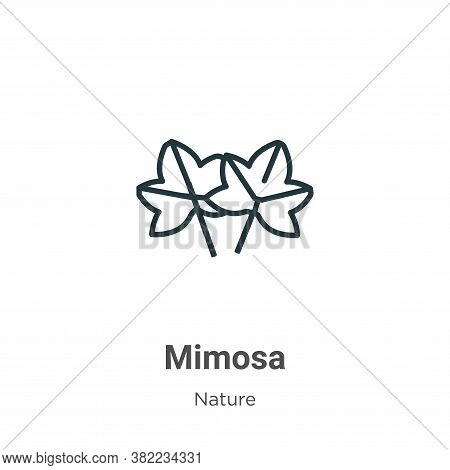 Mimosa icon isolated on white background from nature collection. Mimosa icon trendy and modern Mimos