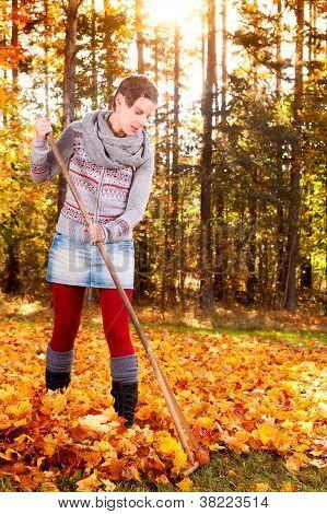 Woman Raking Vivid Yellow Autumn Leaves