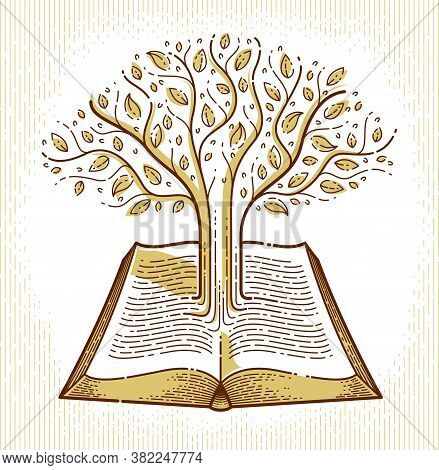 Tree Growing From Text Lines Of An Open Vintage Book Education Or Science Knowledge Concept, Educati