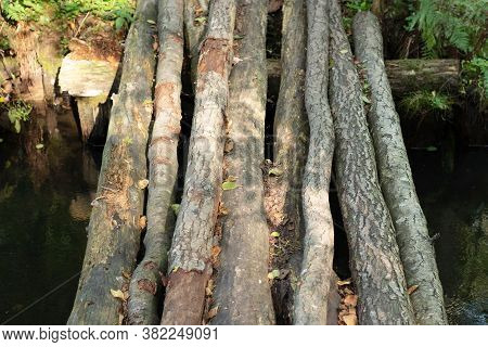 A Makeshift Bridge Made Of Tree Trunks. Tree Trunks Are Used For Crossing The River