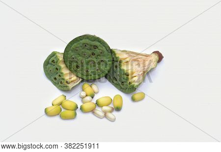 Indian Lotus Pod And Seeds Or Nelumbo Nucifera Isolated On White Background