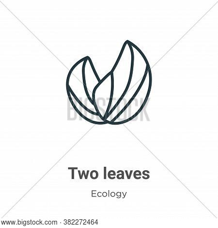 Two leaves icon isolated on white background from ecology collection. Two leaves icon trendy and mod