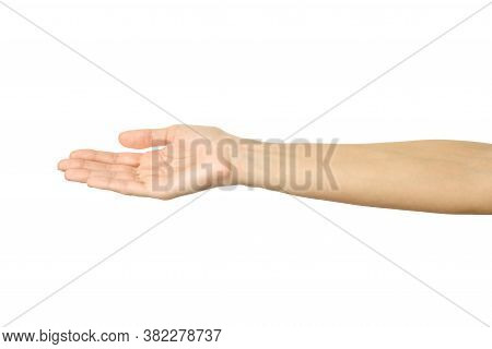Outstretched Female Hand. Woman Hand Gesturing Isolated On White