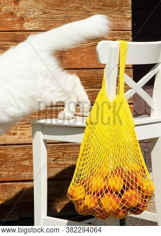 Yelow Mesh Bag Or String Bag With Ripe Peaches On The Back Of A White Chair. Zero Waste.