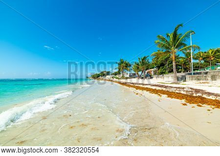 Turquoise Sea In Raisins Clairs Beach In Guadeloupe, French West Indies. Lesser Antilles, Caribbean