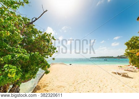 Sun Shining Over La Caravelle Beach In Guadeloupe, French West Indies. Lesser Antilles, Caribbean Se