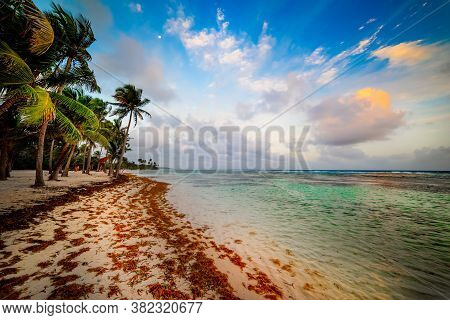 Bois Jolan Beach In Guadeloupe At Sunset, French West Indies. Lesser Antilles, Caribbean Sea
