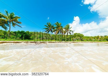 Blue Sky Over Le Saline Beach In Guadeloupe, French West Indies. Lesser Antilles, Caribbean Sea