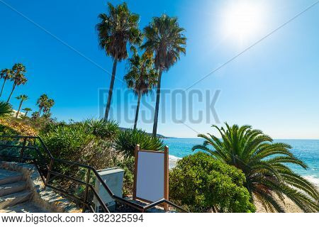 Palm Trees In Laguna Beach Shore Under A Shining Sun. California, Usa