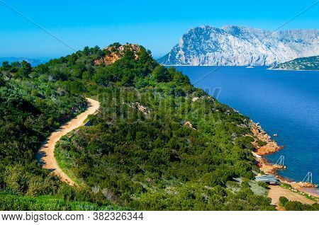 Green Hill By The Sea In Capo Coda Cavallo With Tavolara Island On The Background. Sardinia, Italy