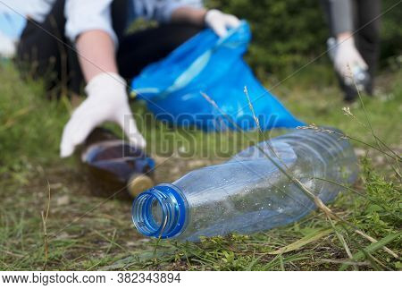 Volunteers Collecting Bottles In The Forest. Environment Pollution Concept.
