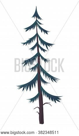 Silhouette Of Fir-tree. Hight Green Pine. Simple Tree Icon. Nature Concept. Pine Tree With Needles I