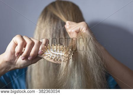 Blonde Combs Dry Hair With A Wooden Comb. On A Gray Background. Hair Disease, Fungus, Brittle Hair,