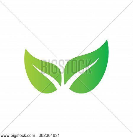 Leaf. Leaf icon. Leaf vector. Leaf icon vector. Leaves icon. Leaf vector icon. Leaf web icon. Leaf icons. Vector Leaf icon. Leaf icon design. Leaf Logo icon vector. Leaf Sign. Leaf Symbol. Trendy Leaf icon vector design template illustration.