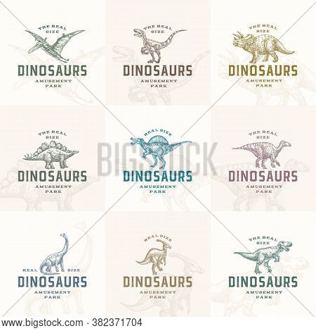 Amusement Park Prehistoric Dinosaurs Abstract Signs, Symbols Or Logo Templates Collection. Hand Draw
