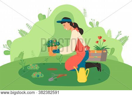 Young Girl Gardener Sits On Her Knees And Plants Flowers In The Garden. Watering Can, Shovel, Rake O