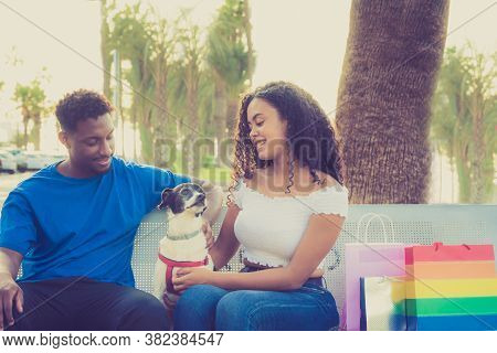 Happy Young Couple In Love Sitting On A Park Bench And Looking Their Dog. Teenagers Relaxing After O