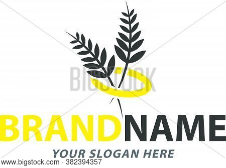 Creative Paddy Logo Design Suit For Farm Business