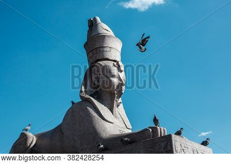 Antique Egyptian Sphinx Sculpture From Gray Granite Against Blue Sky With Flying Pigeon, Many Pigeon