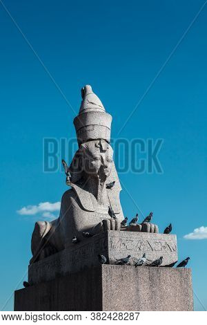 Vintage Egyptian Sphinx Sculpture From Gray Granite Against Blue Sky, Many Pigeons Sitting On Ancien