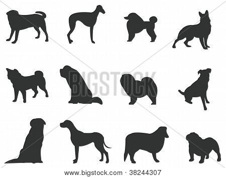 Sets Of Silhouette Dogs, Create By Vector