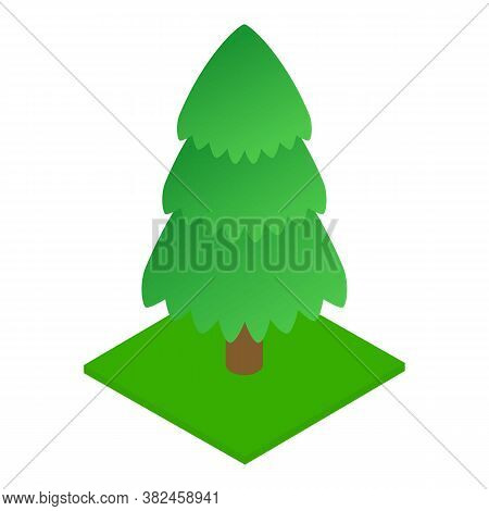 Conifer Tree Icon. Isometric Illustration Of Conifer Tree Vector Icon For Web