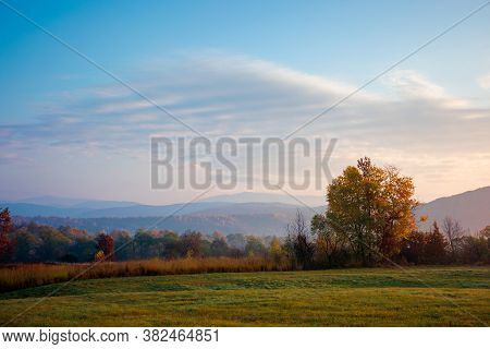 Misty Morning Of Mountainous Countryside. Rural Landscape In Autumn Colors. Trees On The Fields In F
