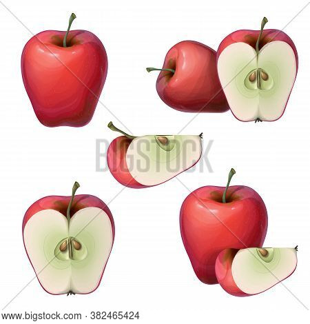 Vector Fresh Red Apples Collection Isolated On White. Whole, Half, And Slice Of A Ripe Juicy Apple.