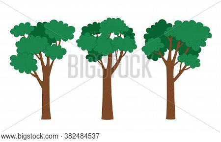 Vector Illustration Of Different Green Trees In Cartoon Style