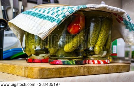 Canned Homemade Pickles And Tomatoes, Homemade Salting