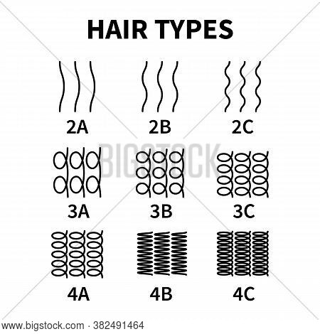 Vector Illustration Of Hair Types Chart With All Curl Types, Labeled. Curly Girl Method Concept. Wav