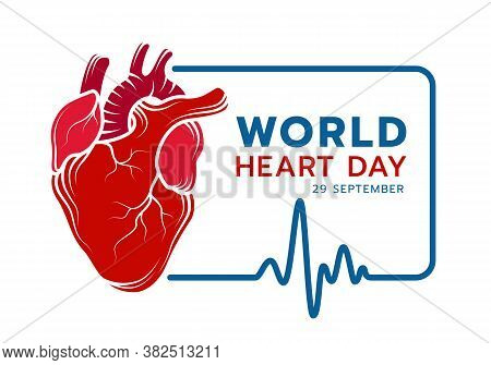 World Heart Day With Red Real Human Heart Drawing Sign Line And Blue Frame Of Heart Rhythm Or Heart