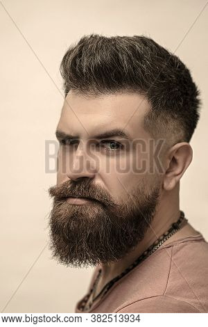 Barbershop Concept. Portrait Of Attractive Severe Brutal Bearded Man Has A Perfect Hairstyle, Modern