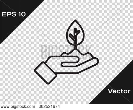 Black Line Plant In Hand Of Environmental Protection Icon Isolated On Transparent Background. Seed A