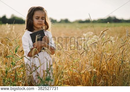 Girl Holds Bible In Her Hands. Reading The Holy Bible In A Field. Concept For Faith, Spirituality An