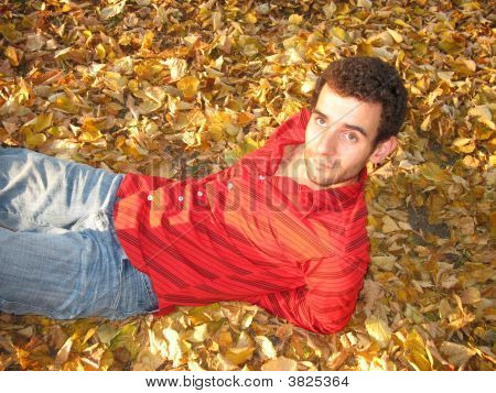 Smiling Man On Leaves