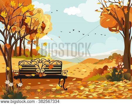 Autumn Landscape Wonderland Forest With Bench Under The Tree,mid Autumn Natural In Orange Foliage,fa