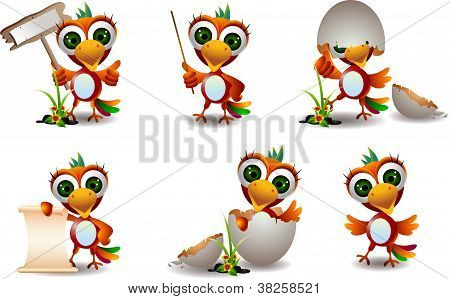 cute baby parrots cartoon set