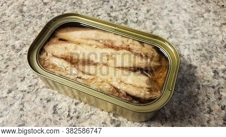 Can Of Sardine Fish With Oil On Counter