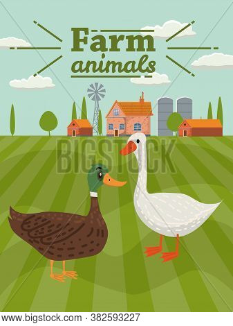 Duck And Goose Are Farm Animals. Rural Landscape Background. Vector Illustration Cartoon Style