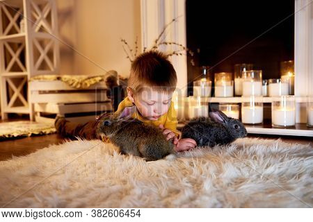 Child Playing With White Rabbit. Little Boy Petting White Bunny. Blue Eyed Cute Boy Petting Grey Rab