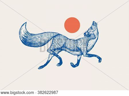Red Fox Badge. Forest Ginger And Red Sun. Wild Animal. Vector Engraved Hand Drawn Vintage Old Sketch