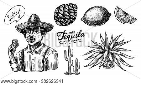 Agave Fruits, Lemon And Cactus. Farmer In A Hat With A Shot Of Tequila. Engraved Hand Drawn Vintage