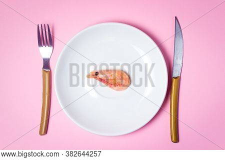 Shrimp On A White Plate. Boiled Shrimp In A Plate On A Pink Background. One Shrimp On A Large Plate